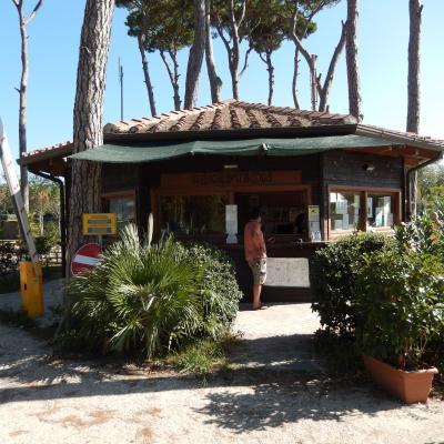 Camping Paradiso in Viareggio aan de zee